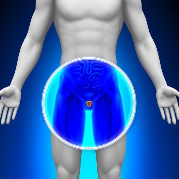 Natural Way Laboratories - Produzione integratori alimentari conto terzi - integratori per la prostata e le vie urinarie