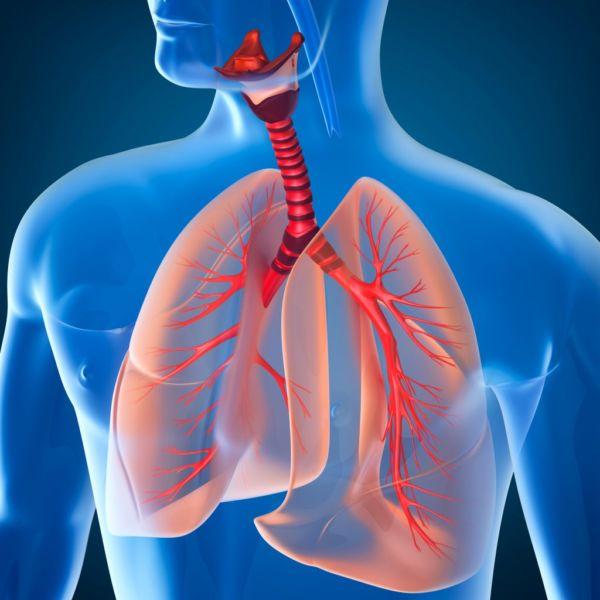 Natural Way Laboratories - Produzione integratori alimentari conto terzi - integratori per il sistema immunitario